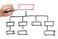 Organization chart drawn on the white paper Stock Photo