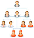 Organization chart teamwork flow network of people the hierarchical diagram the hierarchical management system vector illustration Royalty Free Stock Photo