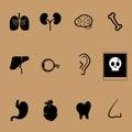 Organs vector health care set design Royalty Free Stock Image