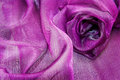 Organza drape beautiful purple background Stock Photo