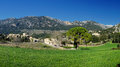 Orient village in majorca tramuntana mountains and spain Royalty Free Stock Images