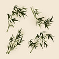 Oriental style painting bamboo leaves ized brush Royalty Free Stock Images