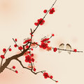 Oriental style painting plum blossom in spring ized brush symbolize love and happiness Royalty Free Stock Photography