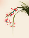Oriental style painting, red orchid flower Royalty Free Stock Photo