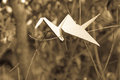 Origami crane in plant nature setting Royalty Free Stock Photo