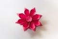 Origami Gerbera Flower