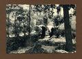 Original 1950 antique photo-gardeners Royalty Free Stock Photo