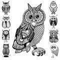 Original artwork of owl ink hand drawing in ethnic style collection vector illustration black end white colors Royalty Free Stock Photo