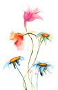 Original flowers illustration watercolor Royalty Free Stock Images