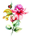 Original flowers watercolor illustration Royalty Free Stock Photo