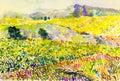 Original landscape colorful fields of flowers in mountain