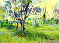 Original oil painting landscape with tree i the artist owns the copyright Royalty Free Stock Image