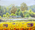 Original oil painting  life in countryside on canvas. Beautiful  Rural landscape, village, two houses, field - Modern art Royalty Free Stock Photo