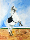 Original painting of white horse rearing in sand Royalty Free Stock Photos