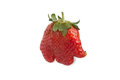 Original strawberry sweet elephant isolated on white tasty background Stock Photography