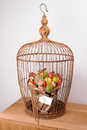 The original unusual edible vegetable and fruit bouquet  with card in bird cage Royalty Free Stock Photo