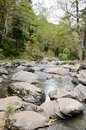 The origins of the Belokurikha River in the Altai Mountains Royalty Free Stock Photo