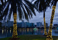 Orlando Skyline at Christmas Royalty Free Stock Photos