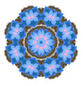 Ornament with blue flowers for your design Royalty Free Stock Photography
