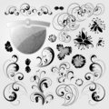 Ornament floral design elements Royalty Free Stock Photo