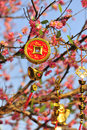 Ornament of lucky coin and gold ingots on the peach tree ornaments symbolises for prosperity in vietnamese culture Stock Photos