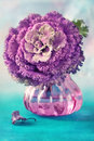 Ornamental cabbage kale decorative flower in a vase Stock Photos