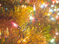 Ornamental colorful electric light closeup photograph on the decoration christmas tree Royalty Free Stock Image