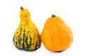 Ornamental Gourds Royalty Free Stock Photo