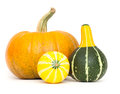 Ornamental gourds and pumpkin isolated on white background Royalty Free Stock Photo