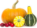 Ornamental gourds and pumpkin isolated on white background Stock Images