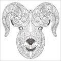 Ornamental head of goat or ram.