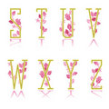 Ornamental letters S, T, U, V, W, X, Y, Z Stock Photos