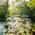 Ornamental pond and fountain in a garden in Bali Royalty Free Stock Photo