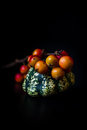 Ornamental pumpkin and red berries on a black background Royalty Free Stock Photos