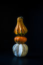 Ornamental pumpkins three white orange and yellow still life photography Stock Images