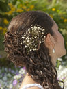Ornate hair style on a bride Stock Photography