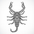 Ornate Scorpio. Vintage black and white Zodiac sign. Vector hand drawn vector Royalty Free Stock Photo