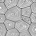 Ornate turtle shell pattern