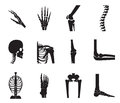 Orthopedic and spine icon set on white background.