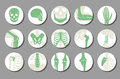Orthopedic and spine vector icons