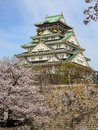Osaka castle and cherry blossom with sakura in japan the picture was taken during sakura in spring Stock Photo