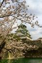 stock image of  Osaka Castle and cherry blossom in spring, Osaka, Japan.