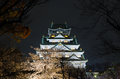 Osaka Castle Night View