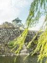 Osaka castle in autumn Royalty Free Stock Photo