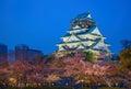 Osaka, Japan at Osaka Castle Royalty Free Stock Photo