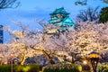 Osaka, Japan at Osaka Castle in Spring