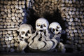 Ossuary with skulls and bones Stock Images