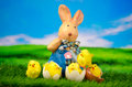 Osterhase mit chick happy easter egg Lizenzfreies Stockfoto