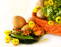 Ostern: Eier, Korb, Blumen und Hühner Lizenzfreie Stockfotos