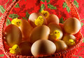 Ostern: kleine gelbe Hühner und einfache Eier Lizenzfreies Stockfoto